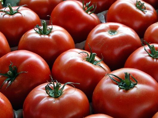 گوجهفرنگی، یاقوتی دردل طبیعت