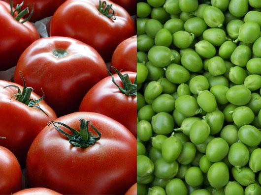 كاشت نخودفرنگی و گوجه فرنگی در خانه