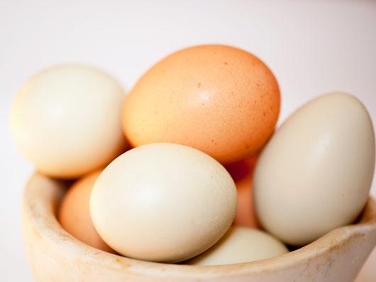سايه روشن های تخم مرغ (1)