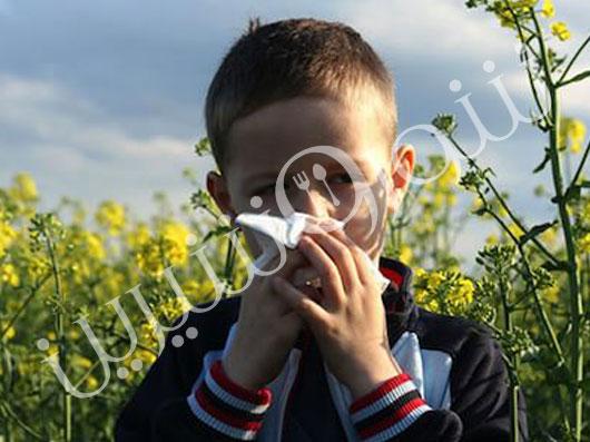 آلرژی | دلیل آلرژی | مواد آلرژی زا