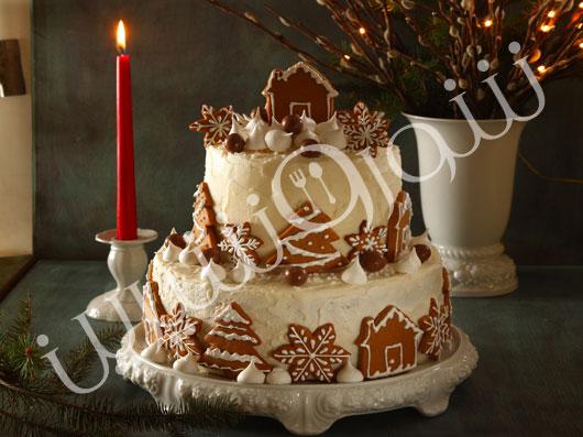 کیک میوۀ خشک زمستانی
