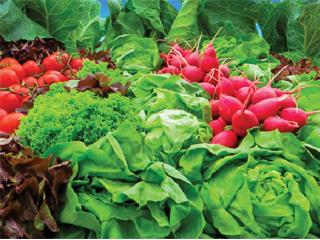 رمز و راز سلامتی به روایت سفیر غذای سالم
