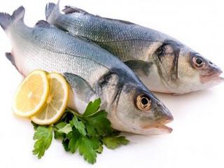 روشهای تشخیص ماهی تازه