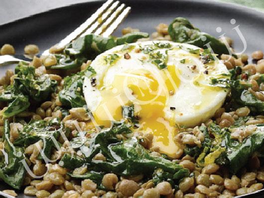 خوراک عدس و تخممرغ آبپز
