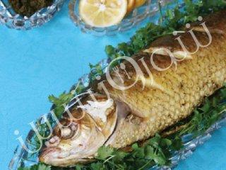 ماهی سفید شكم پر