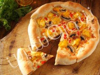 پیتزای فانتزی مرغ