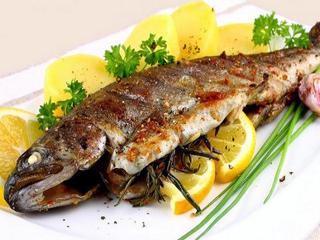 تأثیر ماهی در پیشگیری و كنترل بیماریها